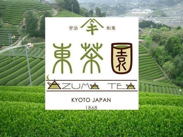 茶源郷・東茶園